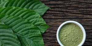 Kratom leaves and kratom powder