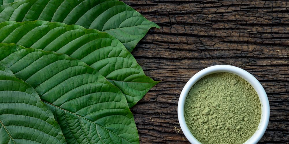 Why Green Kratom Over Other Strains?